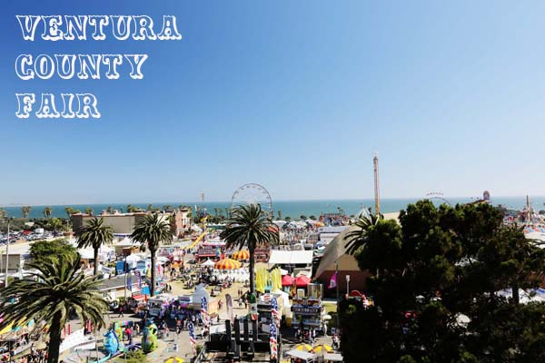 Ventura County Fair | The Stork and the Beanstalk