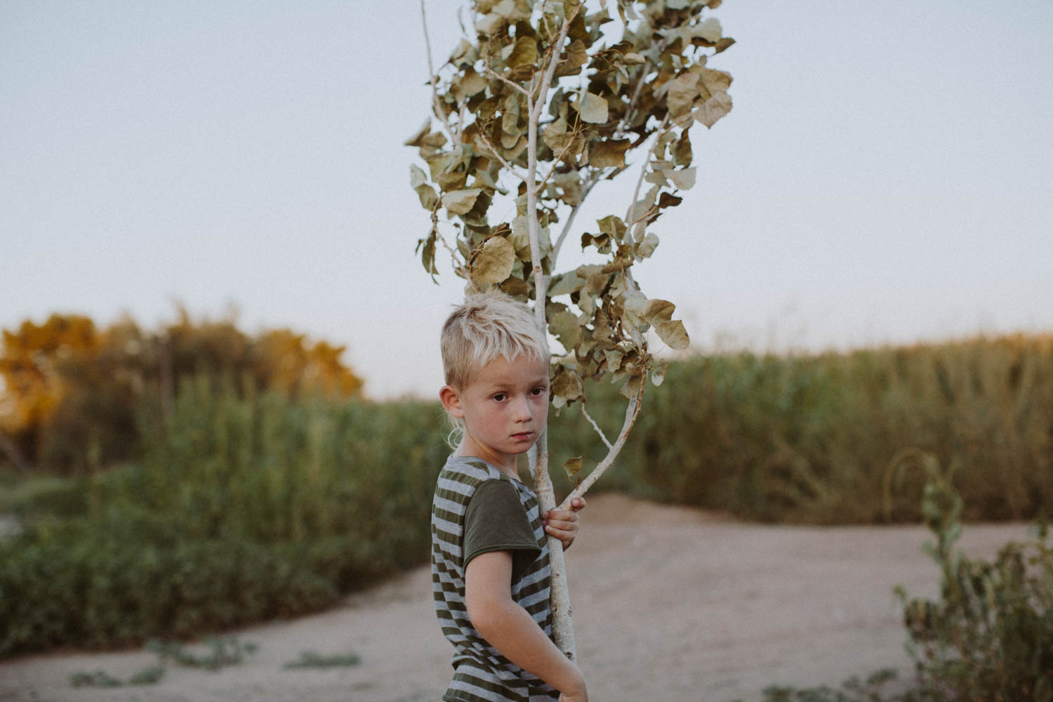 san clemente family photographer _ ashley jennett-1666